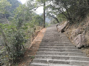 Stopnice do vrha